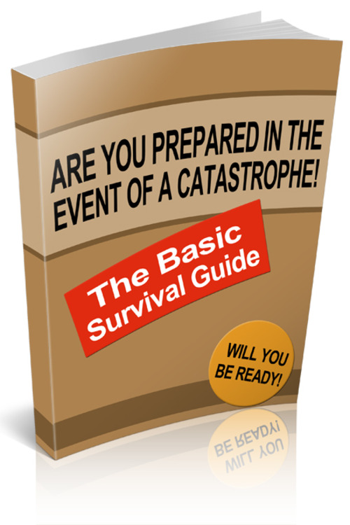 Pay for The Basic Survival Guide
