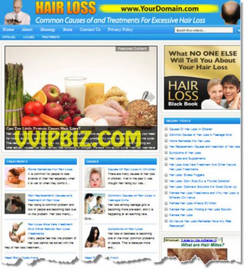 Pay for Hair Loss Website PLR - WordPress Health Niche Blogs