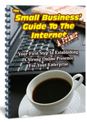 Pay for The Small Business Guide To The Internet A Primer