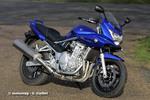 Thumbnail Suzuki Bandit GSF650 Manuale Officina 2005-2008 ITALIANO