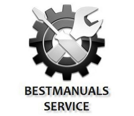 PGO T-REX 50 Workshop Service Manual Download