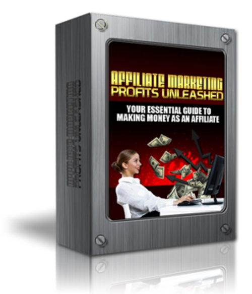 Pay for Affiliate Marketing Profits Unleashed!