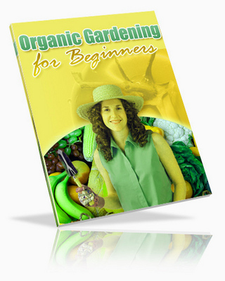 Pay for Organic Gardening for beginners
