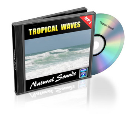 Pay for One Hour Tropical Waves Nature Sounds Audio MP3 with Rights