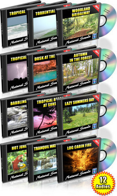 Pay for 12 Hours of Natural Sounds Audio MP3 Royalty Free Mrr