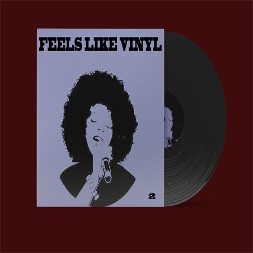 Pay for Feels Like Vinyl 2