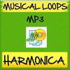 Thumbnail Harmonica Loop Music