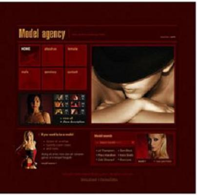 Pay for 8 FLASH CUSTOMIZABLE MODELING AGENCY WEBSITE TEMPLATES