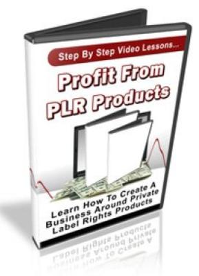 Binary options plr ebook