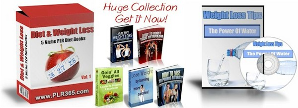 Pay for 5 No Restriction Diet & Weight Loss PLR eBooks + FREE Bonus!