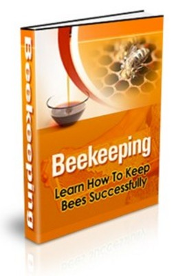 Pay for Beekeeping PLR eBook + Turnkey Website!