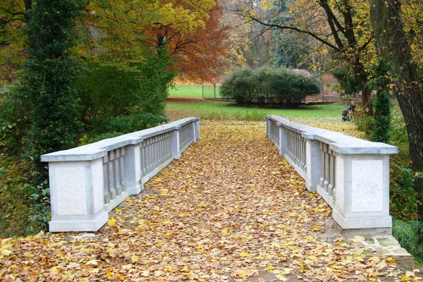 Pay for Herbst im Park