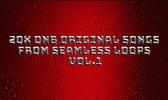 Thumbnail 20x DnB Original Songs From Seamless Loops Vol.1