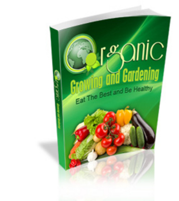 Pay for Produce Your Own Organic Food At No Extra Cost!