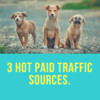Thumbnail  3 Hot Paid Traffic Sources.