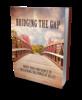 Thumbnail Bridging the gap