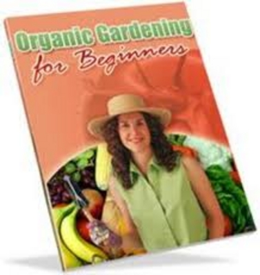 Pay for Organic Gardening For Beginners With PLR