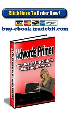 Pay for Adwords Primer