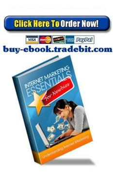 Pay for Internet Marketing Essentials For Newbies