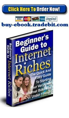 Pay for Beginners Guide To Internet Riches