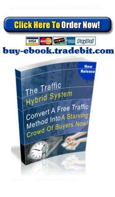Pay for The Traffic Hybrid System