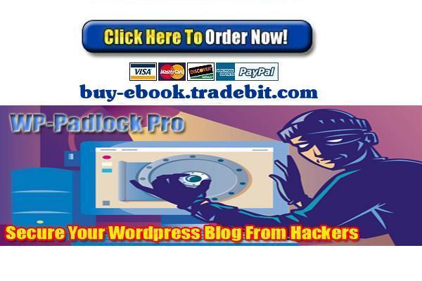 Pay for WP Padlock Pro