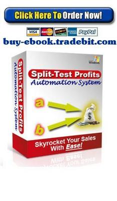Pay for Split Test Profits Automation System