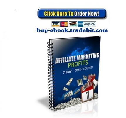 Pay for Affiliate Marketing Profits Crash Course