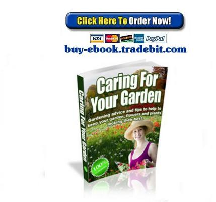 Pay for Caring For Your Garden