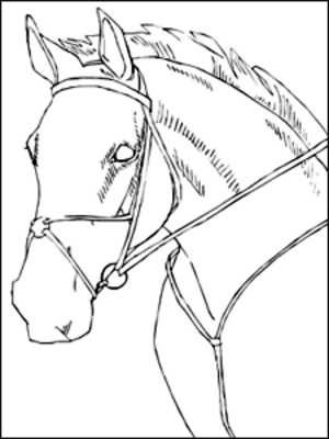 Coloring Pages Horses #9