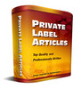 Thumbnail 25 Private Investigation PLR Articles