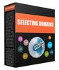 Thumbnail MRR - Selecting a Domain Name - ZIP