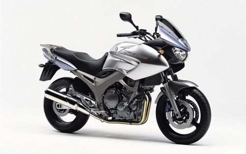 Pay for 2001-2002 Yamaha TDM900(P) Workshop Repair manual DOWNLOAD