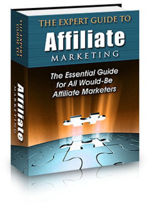 Pay for The Expert Guide to Affiliate Marketing (with PLR)