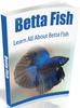 Thumbnail Betta Fish
