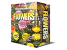Thumbnail Flowers Coloring eBook