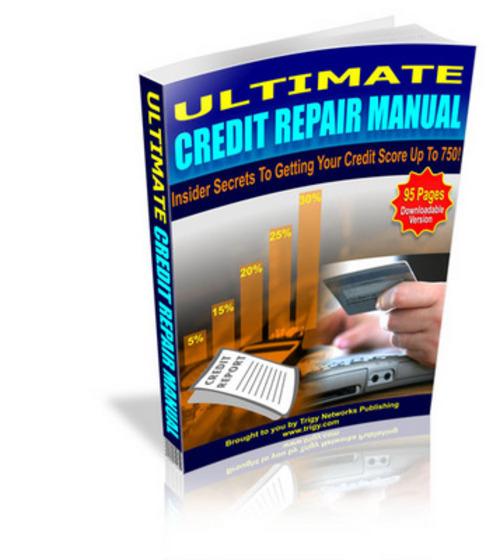 Pay for Ultimate Credit Repair Manual eBook