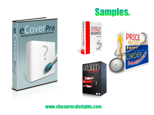 Pay for NEW!* Ecover Pro With PLR*
