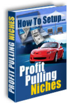 Pay for NEW!* Profit Pulling Niches  MRR*