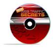 Thumbnail  Website Traffic Report - New Web Traffic Secrets