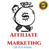 Thumbnail affiliate Marketing Plr Private label articles