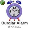 Thumbnail Burglar Alarm, PLR Private label Rights Articles 2016