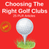 Thumbnail Golf Club - High Quality PLR Private Label Rights articles