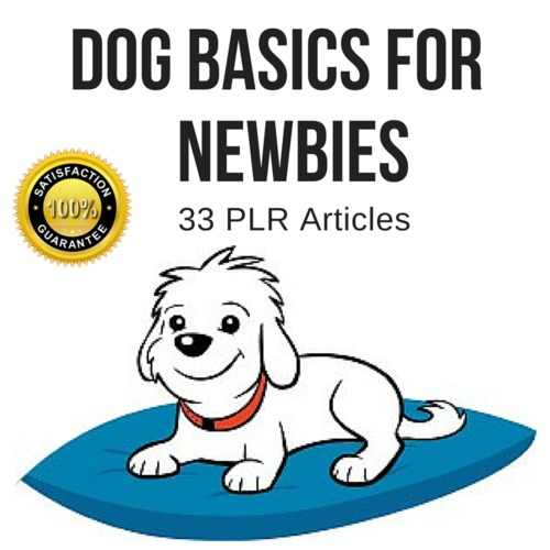Pay for Dog Basic For Newbies - Quality PLR Private Label Articles