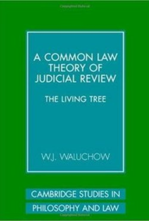 Pay for A Common Law Theory of Judicial Review
