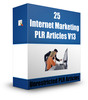 Thumbnail 25 Internet Marketing  PLR Articles 2015