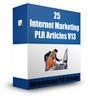 Thumbnail 25 Internet Marketing  PLR Articles 2015