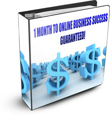 Pay for 1 Month To Online Business Success Guaranteed (100 Copies)