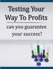 Thumbnail Avoid losing Sales By Testing Your Way To More Money