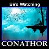 Thumbnail FLP CONATHOR - Bird Watching